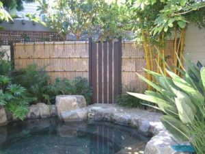 Redwood and Bamboo Gate Next to Rock Spa